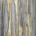 Wood Patterns With Character On An Old Barn by Sue Smith