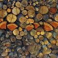 Wood Pile by Virginia Levasseur