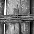 Wood Pilings Tied With Old Rusted Rope by Mina Fouad