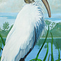 Wood Stork by D T LaVercombe