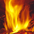 Wood Stove - Blazing Log Fire by Steve Ohlsen
