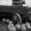 Wood Wagon And Pumpkins Black And White by Debbie Oppermann