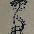 Woodcut Deer by Shirley Heyn