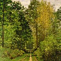 Wooded Path by Claude Monet