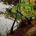 Wooded Path by Rachel Brisbois