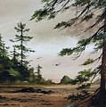 Wooded Shore by James Williamson