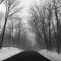 Wooded Winter Road by John Donnery