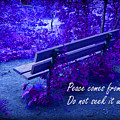 Wooden Bench With Inspirational Text by Donald  Erickson