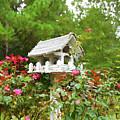 Wooden Bird House On A Pole 3 by Jeelan Clark
