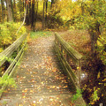 Wooden Bridge by Brian Wallace