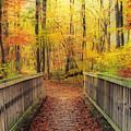 Wooden Bridge   Hdr by Thomas  MacPherson Jr