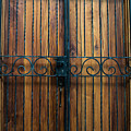 Wooden Door 2 by Totto Ponce