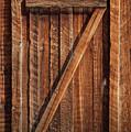 Wooden Door by David Millenheft