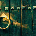 Wooden Door by Totto Ponce