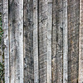 Wooden Fence And Ivy by SR Green