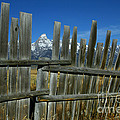 Wooden Fence, Grand Tetons by Jean-Louis Klein & Marie-Luce Hubert