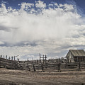 Wooden Fenced Corral Out West by Randall Nyhof