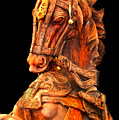Wooden Horse by Charuhas Images