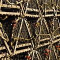 Wooden Lobster Traps by John Greim