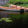 Wooden Rowboats by Sally Weigand