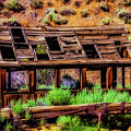 Wooden Shack by Garry Gay