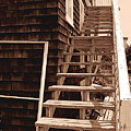 Wooden Stairs In Sepia by Colleen Kammerer