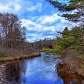 Woodhull Creek by David Patterson