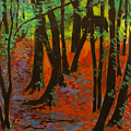 Woodland At Watkins Glen New York by Ethel Vrana