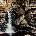 Woodland Falls by Frank Wilson