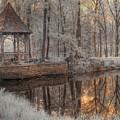 Woodland Gazebo by Jane Linders