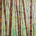 Woodland Spring by Megan Richard