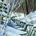 Woodland Stream by Cheryl Johnson