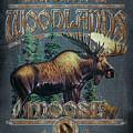 Woodlands Moose Sign by JQ Licensing