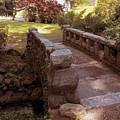 Woodlawn Footbridge by Jessica Jenney