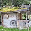 Woodman's Cabin  by Ilan Rosen