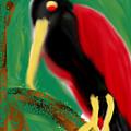 Woodpecker  by Hager Abdelrahim