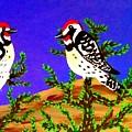 Woodpecker  by Lise Theodoridis