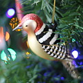 Woodpecker Ornament by Rebecca Pavelka