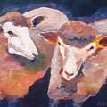Wool Marketing Board by Naomi Gerrard
