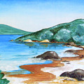 Woolleys Bay New Zealand Northland by Jane Bold