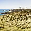 Woolnorth Wind Farm And Ocean Landscape Tasmania by Jorgo Photography - Wall Art Gallery