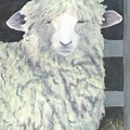 Wooly One by Deborah Butts