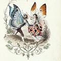 Wordsworth  by MotionAge Designs