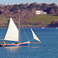 Working Boat At Trelissick Cornwall by Terri Waters