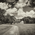Working Plantation And Country Estate by Dale Powell