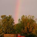 Working Rainbow by La Rae  Roberts