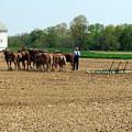 Working The Fields 3 by George Jones