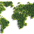 World Map Made Of Green Trees by Johan Swanepoel