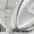 World Trade Center Wtc Oculus Hub by Susan Candelario