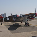 World War II Plane P-40 Thunderbolt by Victor Alcorn